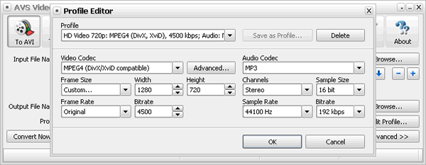 AVS Video Converter Screenshot 4: Preset Videokonvertierung Profile